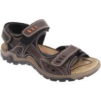 Chaussures Homme Sandales sport Imac  Marron