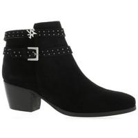 Chaussures Femme Bottes ville Minka Boots cuir velours Noir