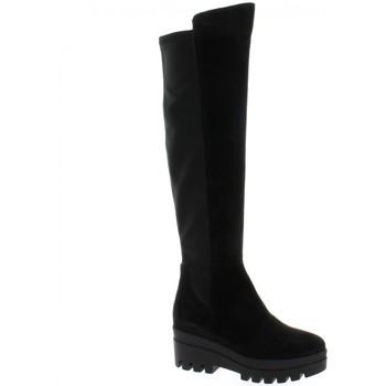 Chaussures Femme Cuissardes Alpe Cuissardes cuir velours Noir