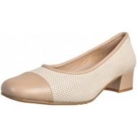 Chaussures Femme Escarpins Argenta 21607 Beige