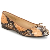 Chaussures Femme Ballerines / babies Betty London MICORO Marron / Python