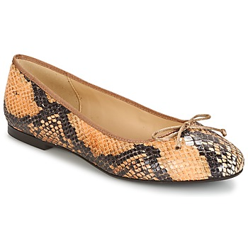 Betty London Marque Ballerines  Micoro