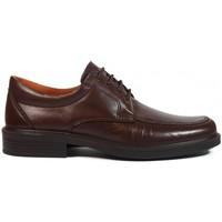 Chaussures Homme Derbies Luisetti Zapatos  0103 Marrón Marron