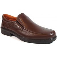 Chaussures Homme Mocassins Luisetti Zapatos  0106 Marrón Marron