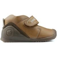 Chaussures Garçon Boots Biomecanics BOTTES BIOGATEO 161147 MARRON