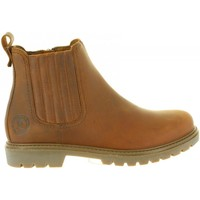 Chaussures Homme Boots Panama Jack BILL C1 Marrón