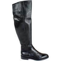 Chaussures Femme Bottes ville Divine Follie DIV-I18-NELLYD66-NE Nero