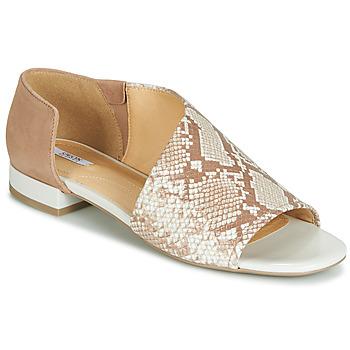 Chaussures Femme Sandales et Nu-pieds Geox D WISTREY SANDALO Beige / Ecaille