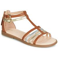 Chaussures Fille Sandales et Nu-pieds Geox J SANDAL KARLY GIRL Camel / Doré