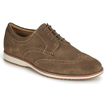 Chaussures Homme Derbies Geox BLAINEY BROWN