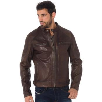 Vêtements Homme Vestes en cuir / synthétiques Daytona COLLINS LAMB PAOLO DARK COGNAC Cognac