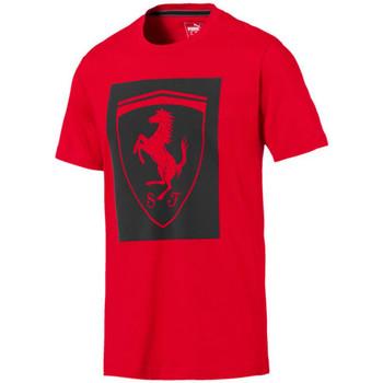 Vêtements Homme T-shirts manches courtes Puma Teeshirt  FERRARI BIG SHIELD - 576684-01 Argent