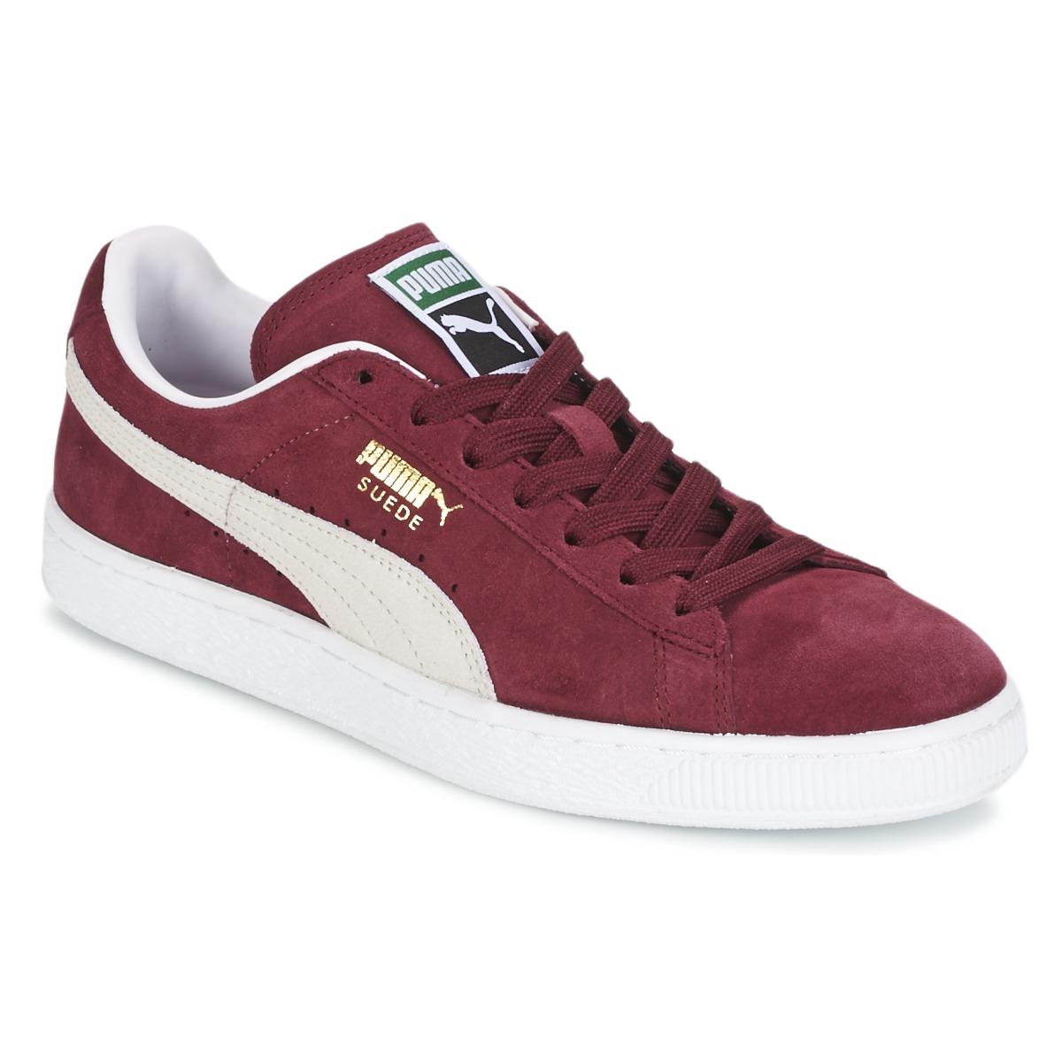 Puma SUEDE CLASSIC+ Rouge / Blanc