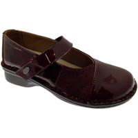 Chaussures Femme Ballerines / babies Calzaturificio Loren LOM2690bo tortora