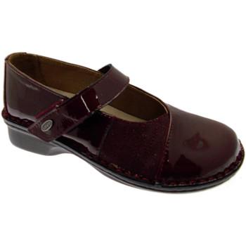 Chaussures Femme Ballerines / babies Loren LOM2690bo tortora