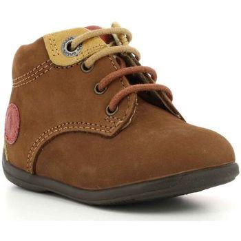 Chaussures Garçon Boots Aster Olbi MARRON