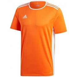 Vêtements Homme T-shirts manches courtes adidas Originals Entrada 18 m/c Orange-White