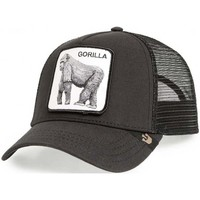 Accessoires textile Casquettes Goorin GORRA  CARRYOVER KING OF THE JUNGLE Noir