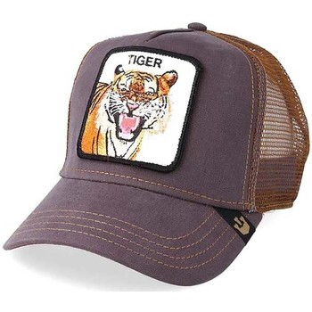 Accessoires textile Casquettes Goorin GORRA  CARRYOVER EYE OF THE TIGER Gris