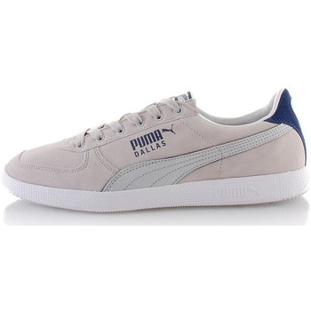 Chaussures Homme Baskets basses Puma Dallas Wind Gris