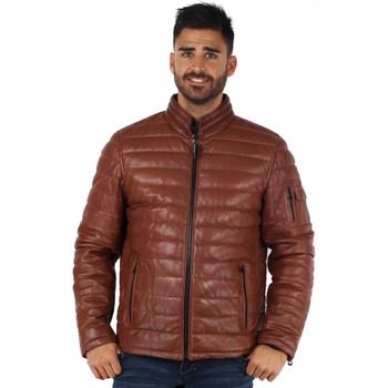 Vêtements Homme Doudounes Daytona Doudoune  Travis en cuir ref_day44561 Cognac Marron