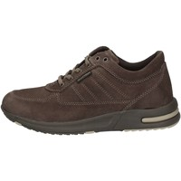 Chaussures Homme Baskets basses Valleverde 17821 Gris