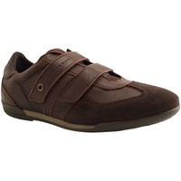 Chaussures Homme Baskets basses Botty Selection Hommes J1331 JOOZE MARRON
