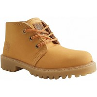 Chaussures Boots Potomac BOT420 CAMEL