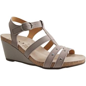 Chaussures Femme Sandales et Nu-pieds Botty Selection Femmes 5918 GRIS