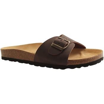 Chaussures Homme Sandales et Nu-pieds Plakton BOHEME MARRON