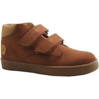 Chaussures Garçon Baskets montantes Aster SIROAD MARRON MOYEN