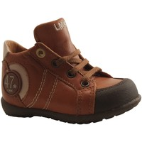 Chaussures Garçon Baskets montantes Little Mary - FELIX - BOTTILLON  LACAGE - COGNAC COGNAC