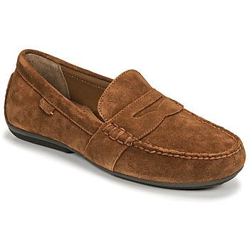 Chaussures Homme Mocassins Polo Ralph Lauren REYNOLD Maron