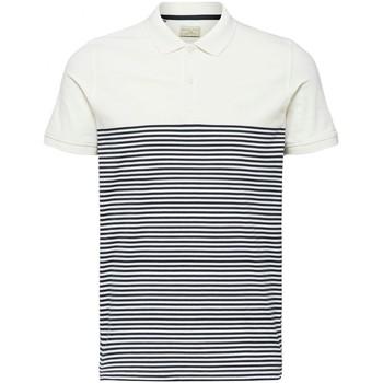 Vêtements Homme Polos manches courtes Selected Polo manches courtes à rayures ARO H Blanc Blanc