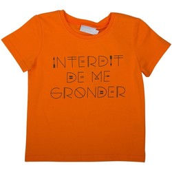Vêtements Enfant T-shirts & Polos Interdit De Me Gronder FLECHE Marron chocolat