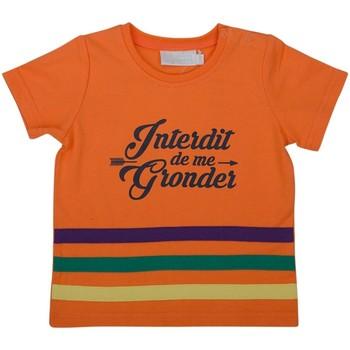 Vêtements Garçon T-shirts & Polos Interdit De Me Gronder CACTUS Multicolore