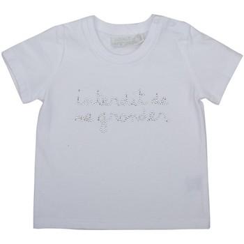Vêtements Fille T-shirts manches courtes Interdit De Me Gronder SIROCCO Argent