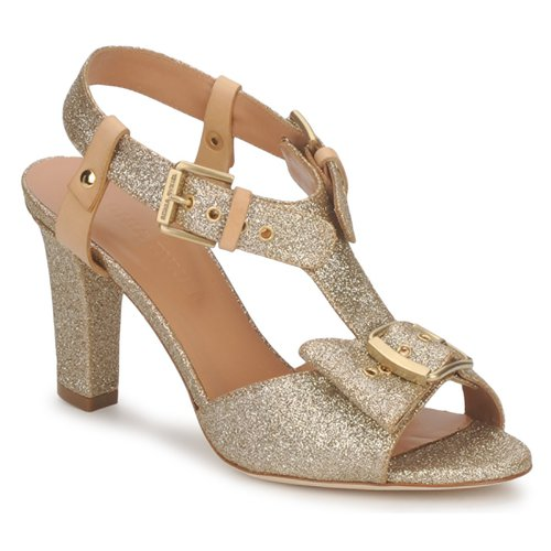 Chaussures Femme Sandales et Nu-pieds Sonia Rykiel DEFIL GAT Glitter / Gold