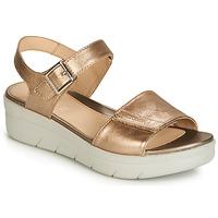 Chaussures Femme Sandales et Nu-pieds Stonefly AQUA III 2 LAMINATED Doré