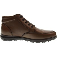 Chaussures Homme Baskets montantes Enval  Marrone