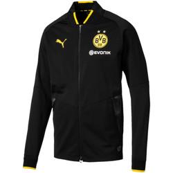 Vêtements Homme Vestes de survêtement Puma Veste d'entraînement  BVB Stadium - Ref. 752855-02 Noir