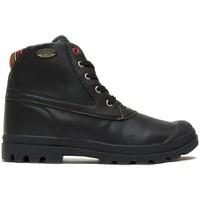 Chaussures Femme Boots Little Marcel Bottines Presto H14IGC010 Noir Noir