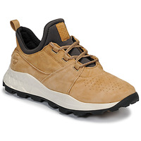 Chaussures Homme Baskets basses Timberland BROOKLYN LACE OXFORD Beige