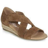 Chaussures Femme Sandales et Nu-pieds Betty London JIKOTE Camel