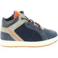 Chaussures Garçon Boots Timberland A1URG DAVIS Azul