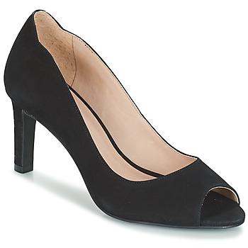 Chaussures Femme Escarpins André CECILIA Noir