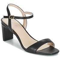 Chaussures Femme Sandales et Nu-pieds André CIGALE Noir