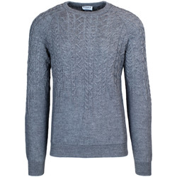 Vêtements Homme Pulls Hydra Clothing ALTON Gris
