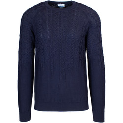 Vêtements Homme Pulls Hydra Clothing ALTON bleu
