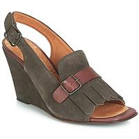 Chaussures Femme Sandales et Nu-pieds Chie Mihara  Gris